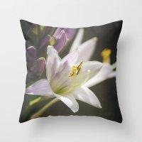 Spotlight on Nature Throw Pillow