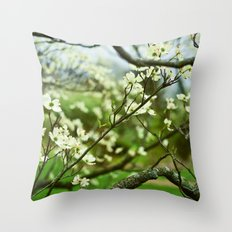 Surrounded by Possibility Throw Pillow