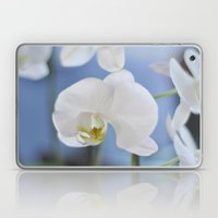 White Phalaenopsis Laptop & iPad Skin