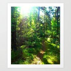 Sunshine Forest II Art Print