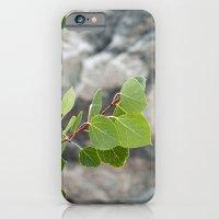 Aspen Leaves iPhone 6 Slim Case