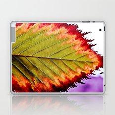 Fall Splendor Laptop & iPad Skin