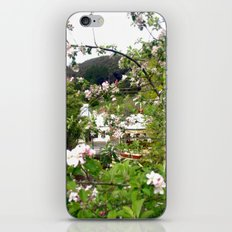 Behind the Flowers! iPhone & iPod Skin
