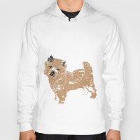Cairn Terrier Dog Hoody