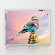Lilac breasted roller at sunset Laptop & iPad Skin