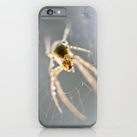 Little Spider iPhone 6 Slim Case