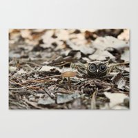 tiny things Canvas Print
