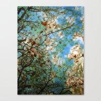 Cotton Candy Canvas Print