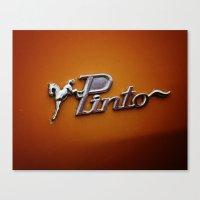 Pinto Canvas Print