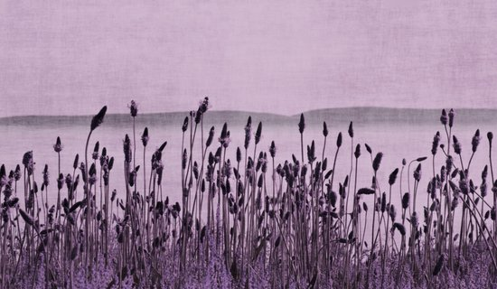 Purple Nature by the sea  Art Print