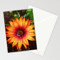 The Flower Sun Stationery Cards