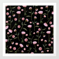 Peonies On Black Art Print