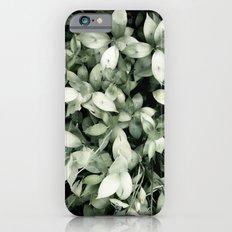 Plant iPhone 6 Slim Case