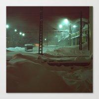 In hibernation Canvas Print