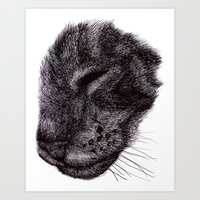 Cat illustration Art Print