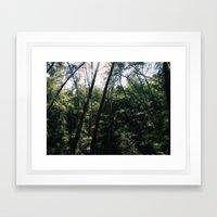 Virginia Key Framed Art Print