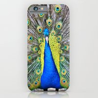 Peacock Display iPhone 6 Slim Case