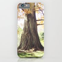 Old As The Trees iPhone 6 Slim Case