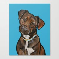 Remy Canvas Print