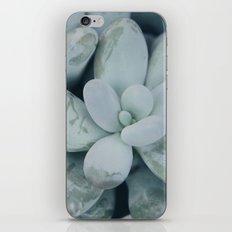 Moonstones iPhone & iPod Skin