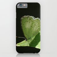 iPhone & iPod Case featuring Summer Sun by TaLins