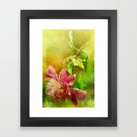 A Kiss Before Sunset Framed Art Print
