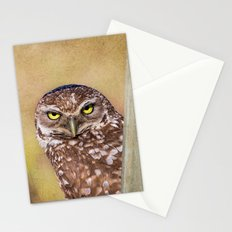 Peek A Book Stationery Cards