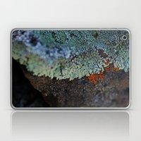 Lichen Ice Laptop & iPad Skin