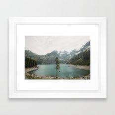 Lone Switzerland Tree - Landscape Photography Framed Art Print
