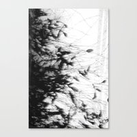 Dark Rain Canvas Print