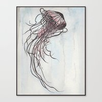 Aurelia 1 Canvas Print