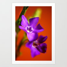 orange and purple Art Print