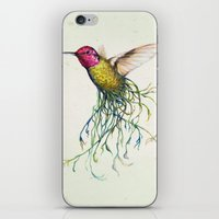 'Roots' iPhone & iPod Skin
