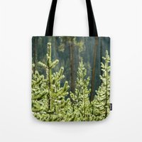 Young Lodgepole Pines after a rain Tote Bag