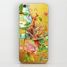 生まれサークル Umare Circle iPhone & iPod Skin