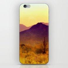 Painted Desert iPhone & iPod Skin