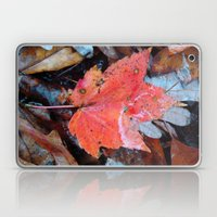 autumnal reverie 646 Laptop & iPad Skin