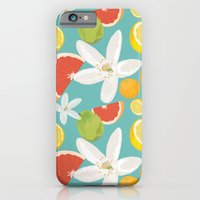 iPhone & iPod Case featuring Citrus by Megan Leitschuh