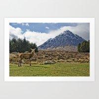 Deer With Buachaille Eti… Art Print