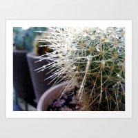 Martha The Cactus  Art Print