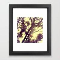 Blossom Shade Framed Art Print