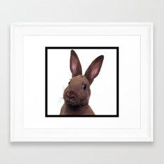 Hug A Bun Framed Art Print