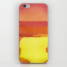 color field one iPhone & iPod Skin