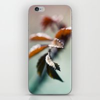 nature colors iPhone & iPod Skin