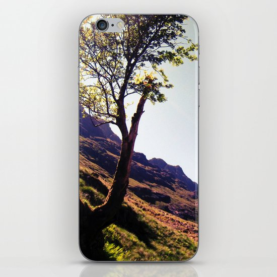 tree side. iPhone & iPod Skin