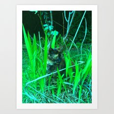 Play time in the garden Art Print