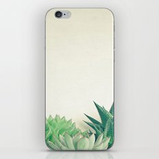 Succulent Forest iPhone & iPod Skin