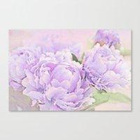 Lavender Peonies Canvas Print