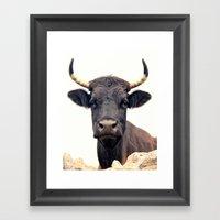 Yellow Horns Framed Art Print
