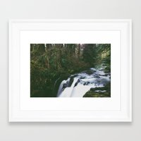 Woodland Creek Framed Art Print